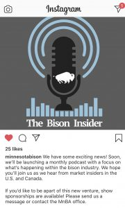 MN Bison Insider Podcast Image
