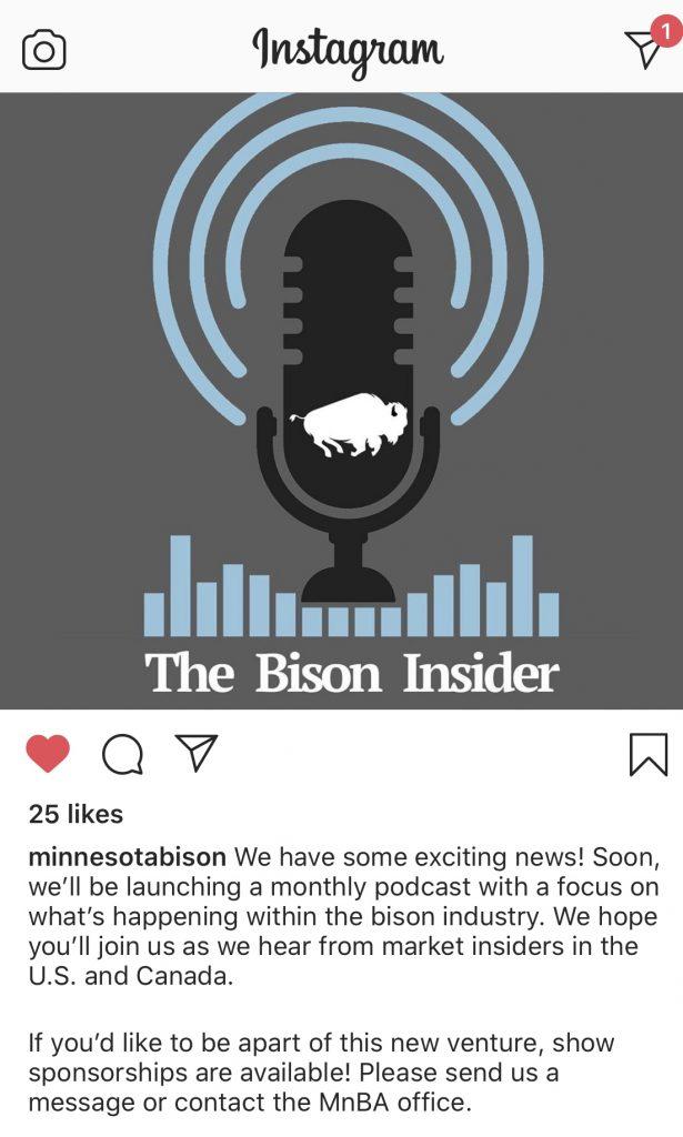 MN Bison Insider Podcast Image